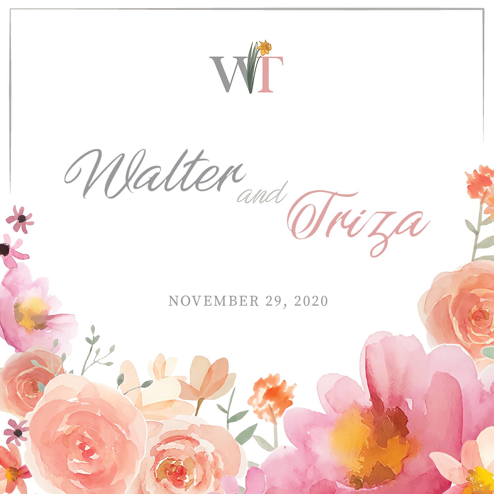 walter-triza01_splash